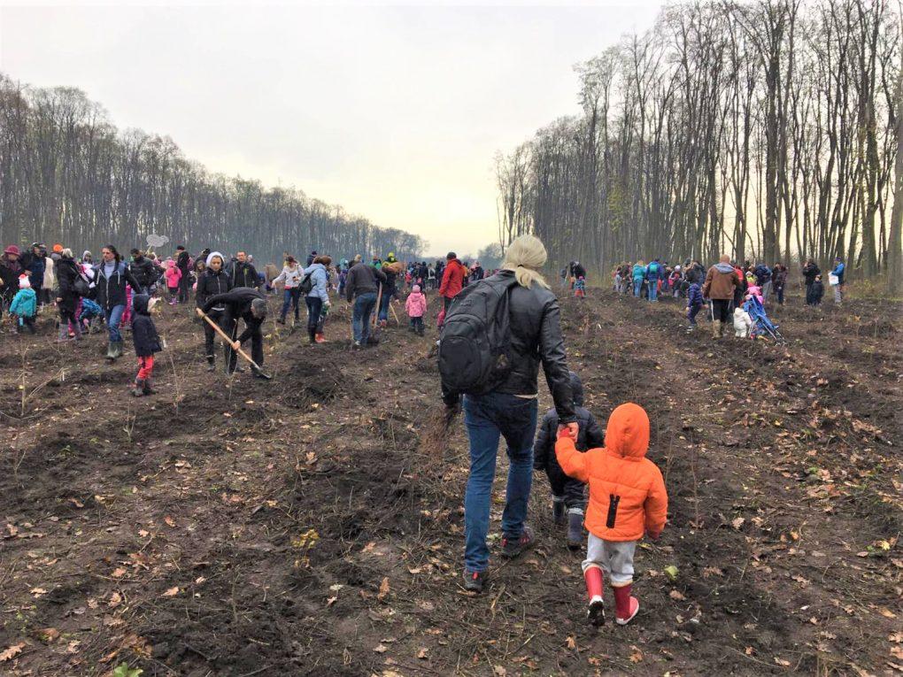 """Copiii ocrotesc România! Cum a fost la campania de împădurire """"Mic și ecologist"""""""